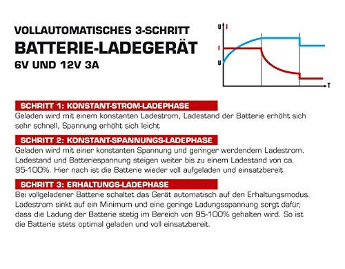 Dino KRAFTPAKET 3A-6V/12V Batterieladegerät IP20 für KFZ Auto Motorrard Quad ATV Boot